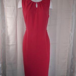 Casper pink Sheath dress size 12p
